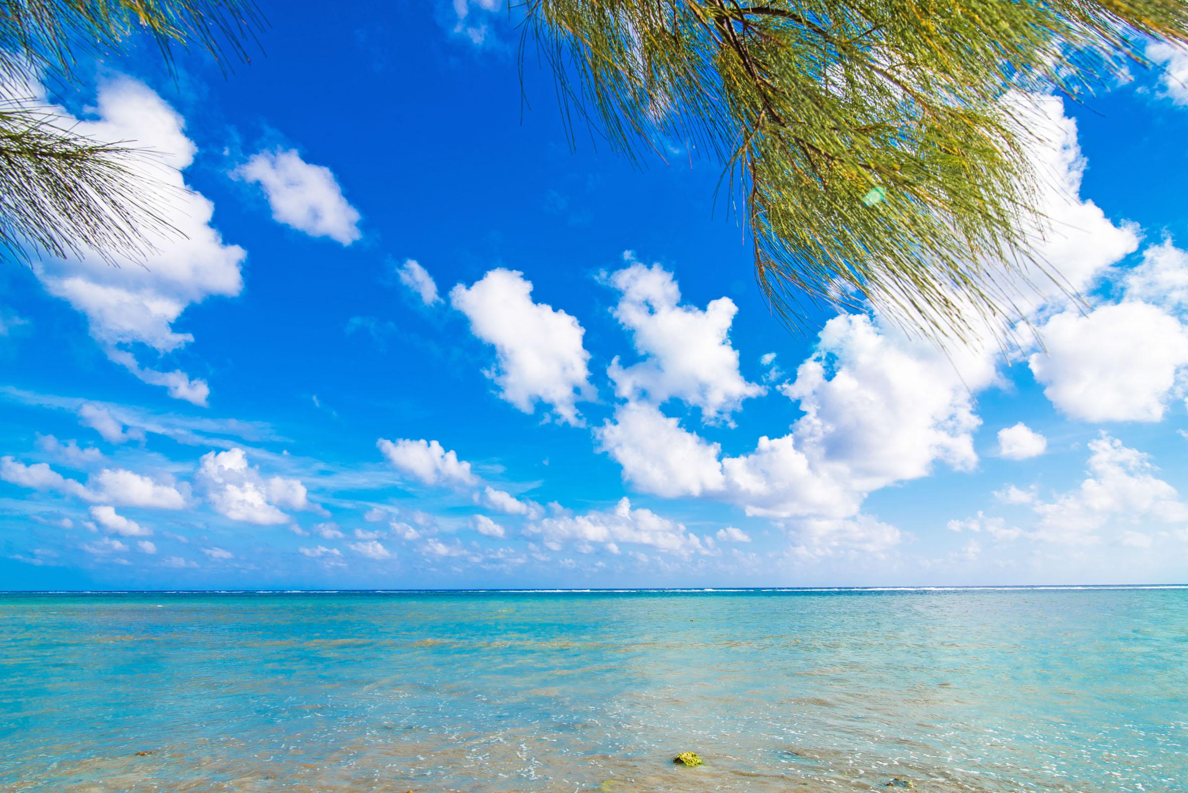 Paradise Villas #1 View
