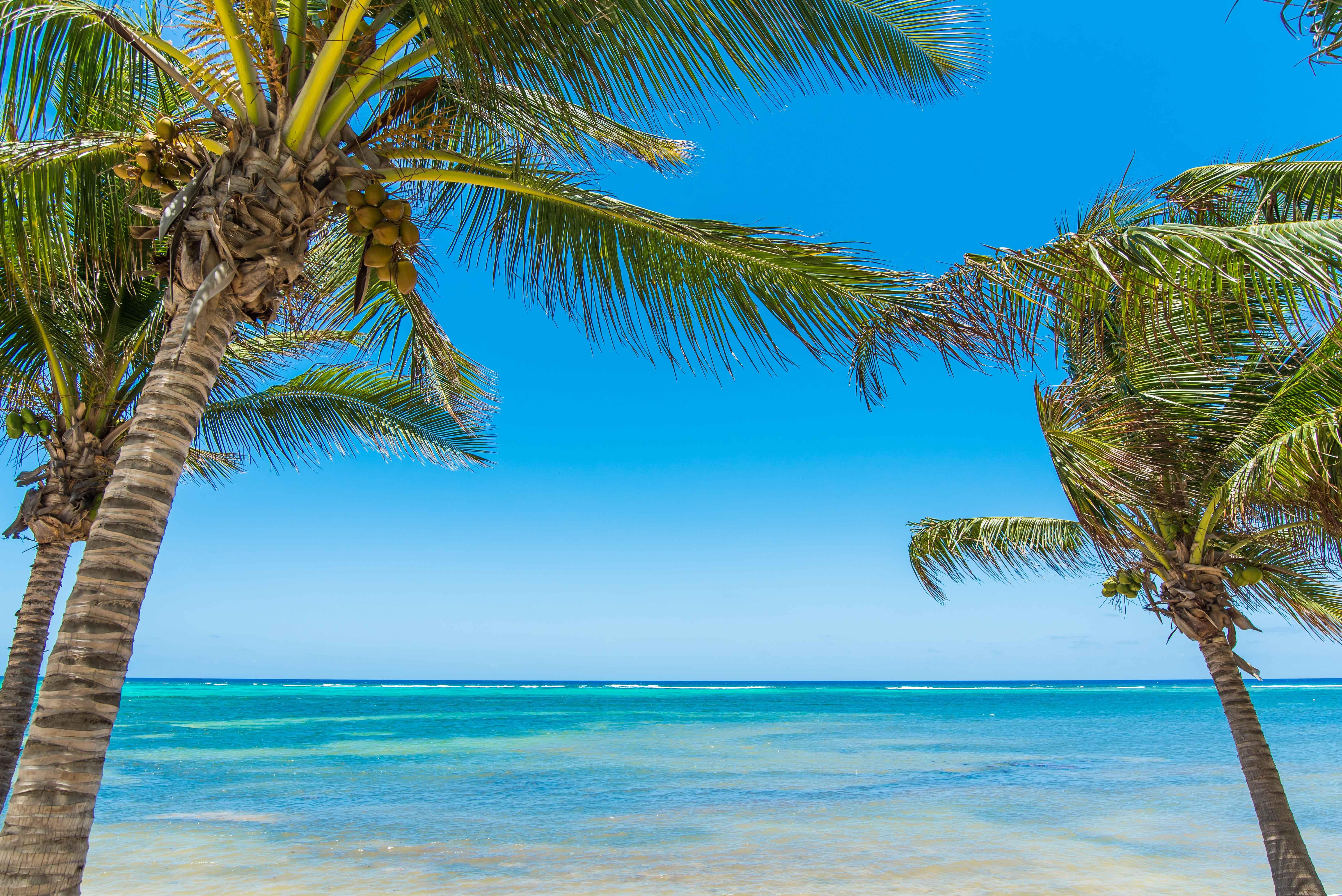 Sprat Bay Caribbean View