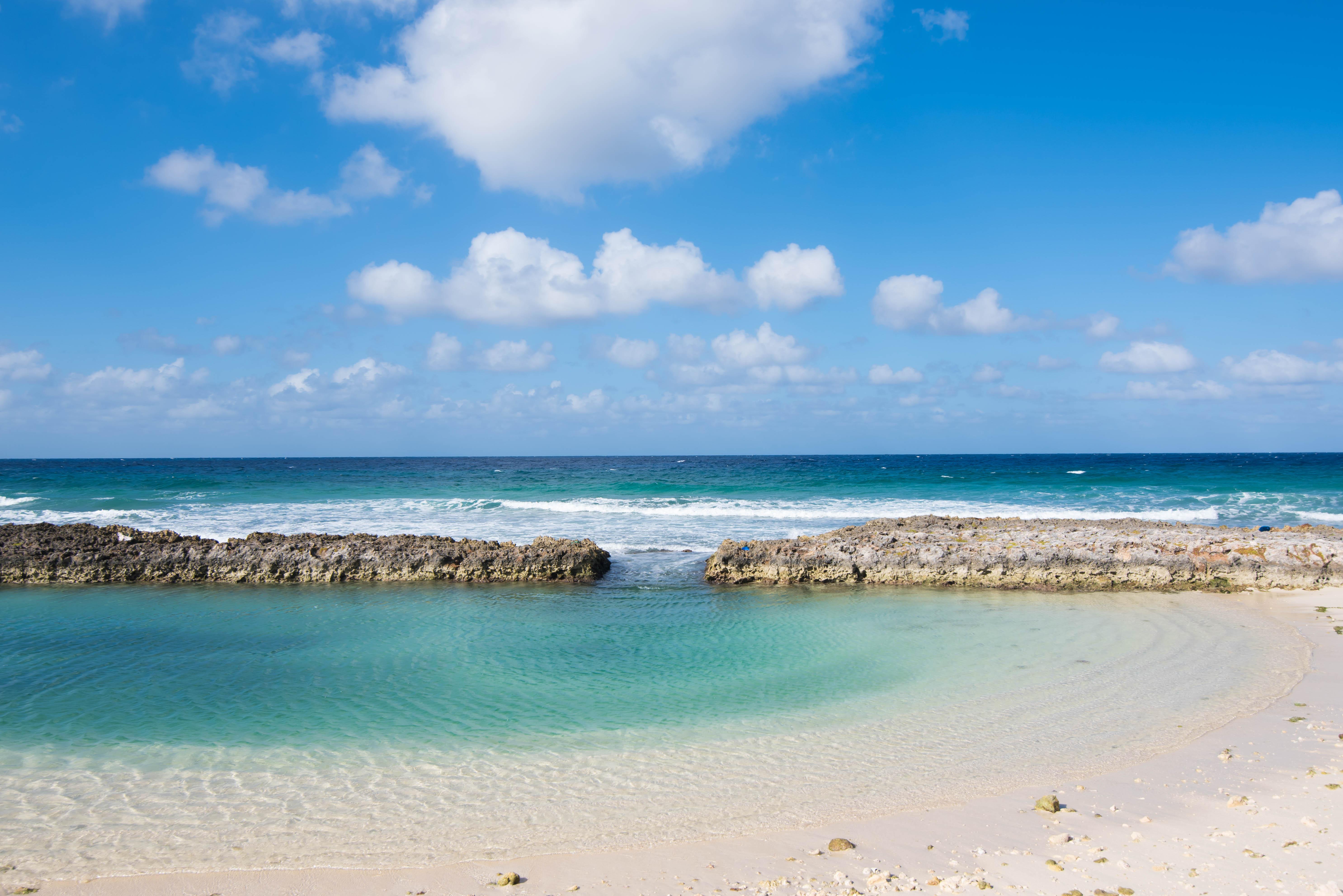 Amazing Swim Cove