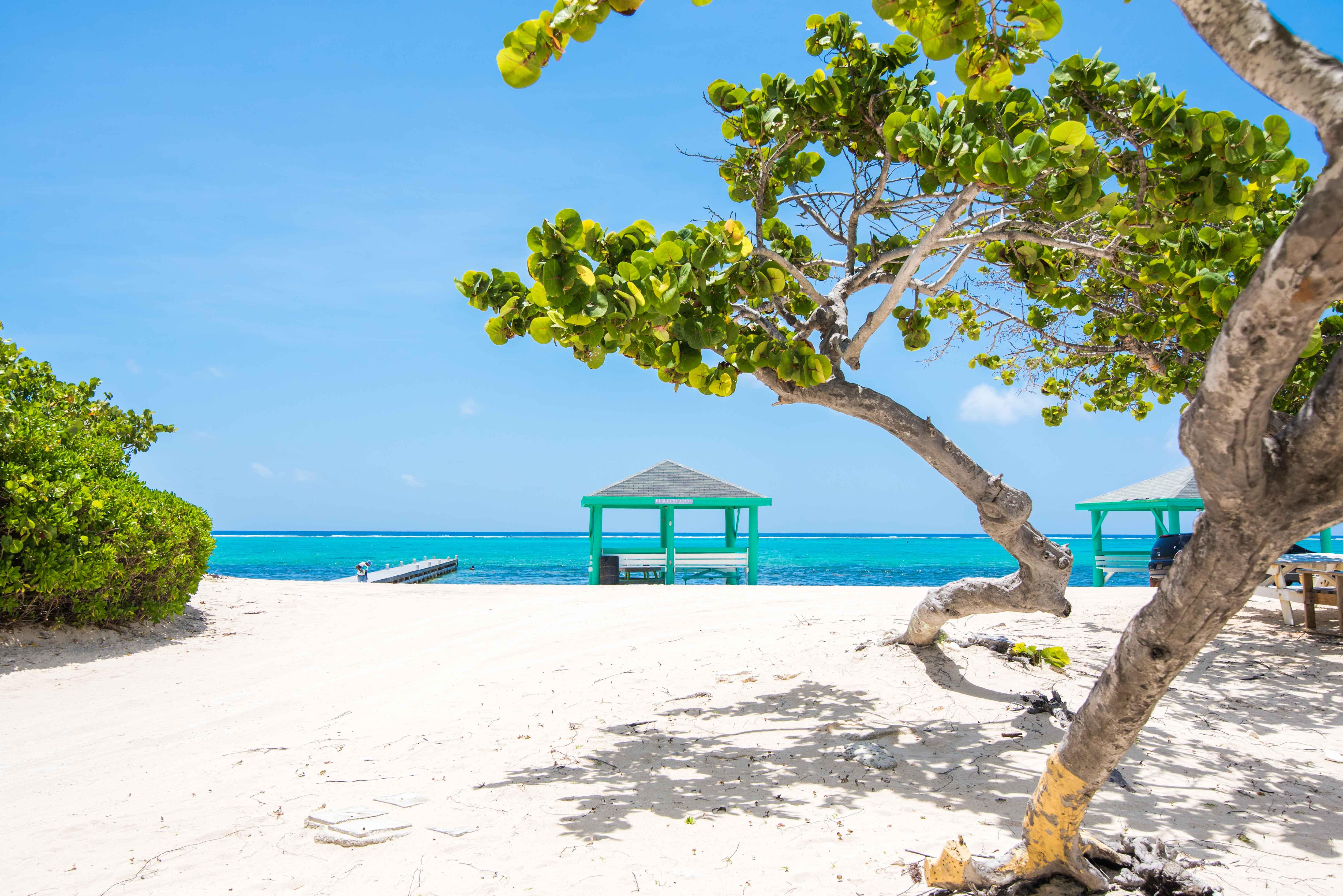 Grand Cayman online datingHur man skriver en perfekt online dating profil