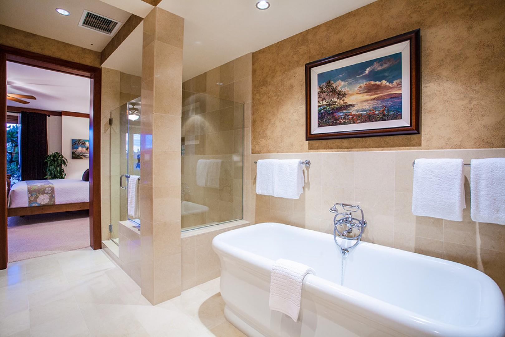 Soaking tub and separate shower in master bath.