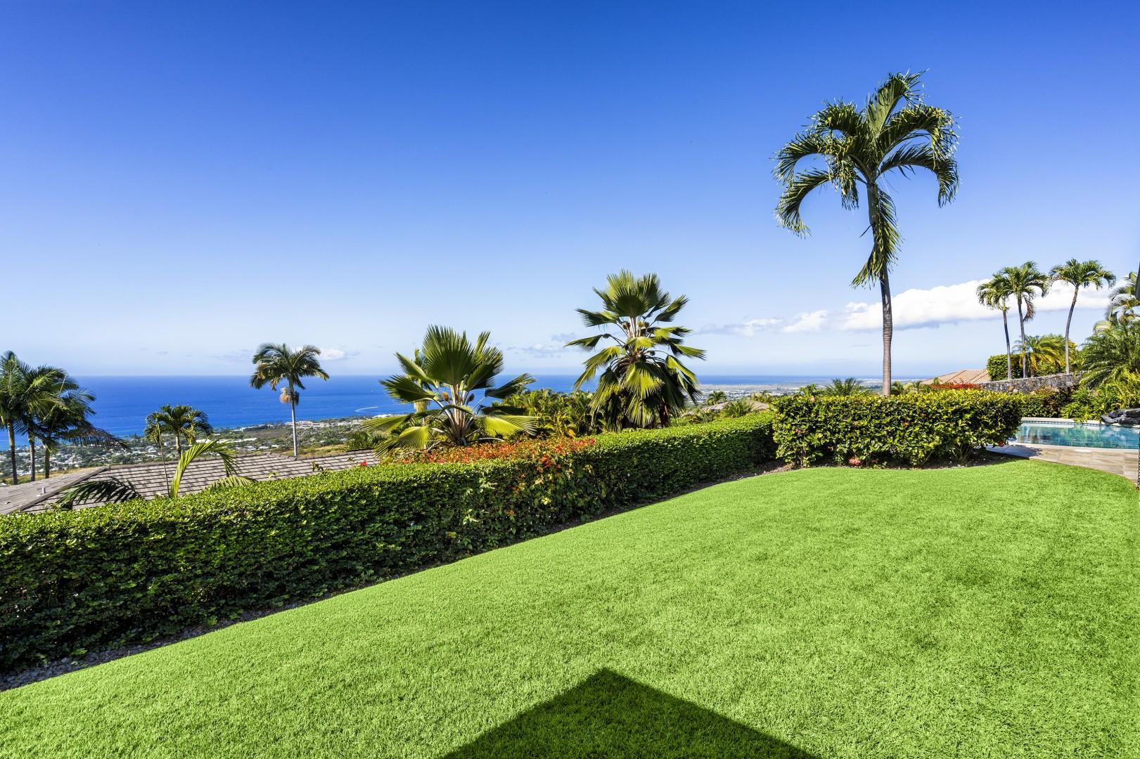 Lush green grass!