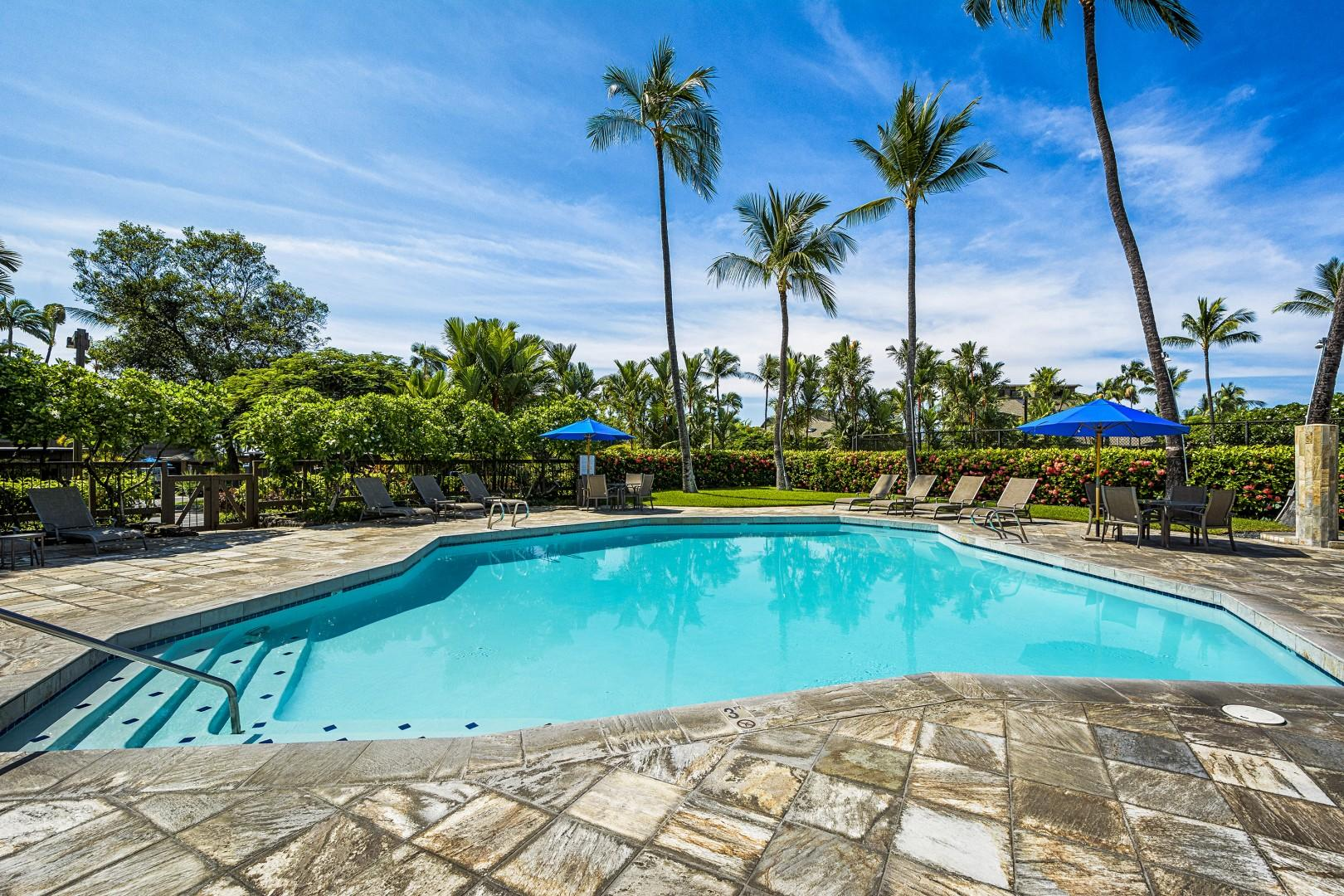 Perfect pool for relaxing in the Kona sun!