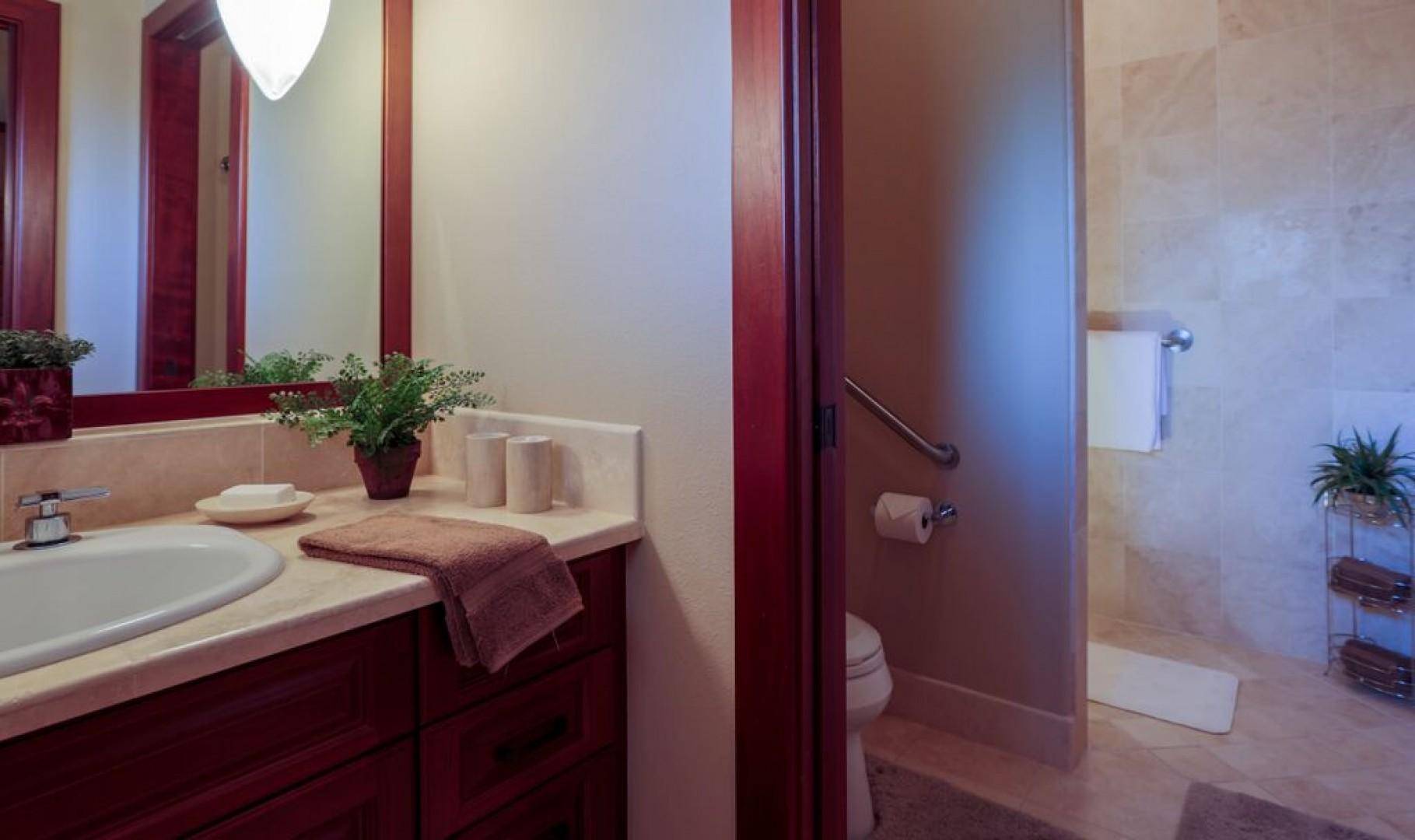 Second master en suite with walk-in shower