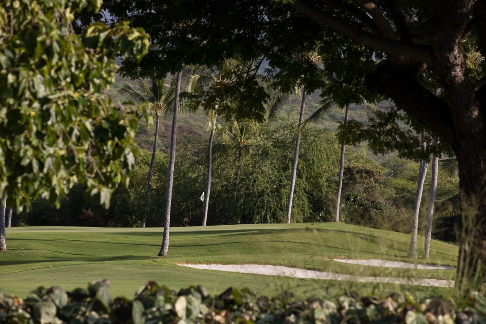 The lush golf course