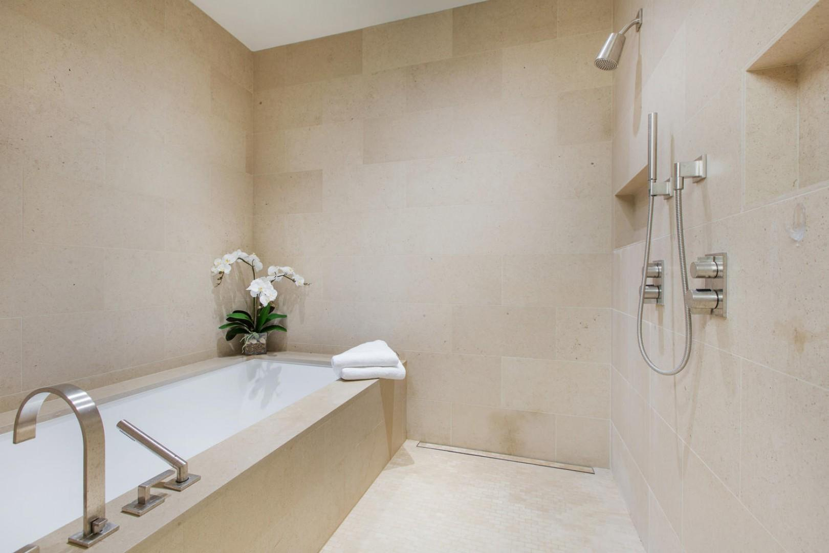 Master Bathroom Tub/Shower Room