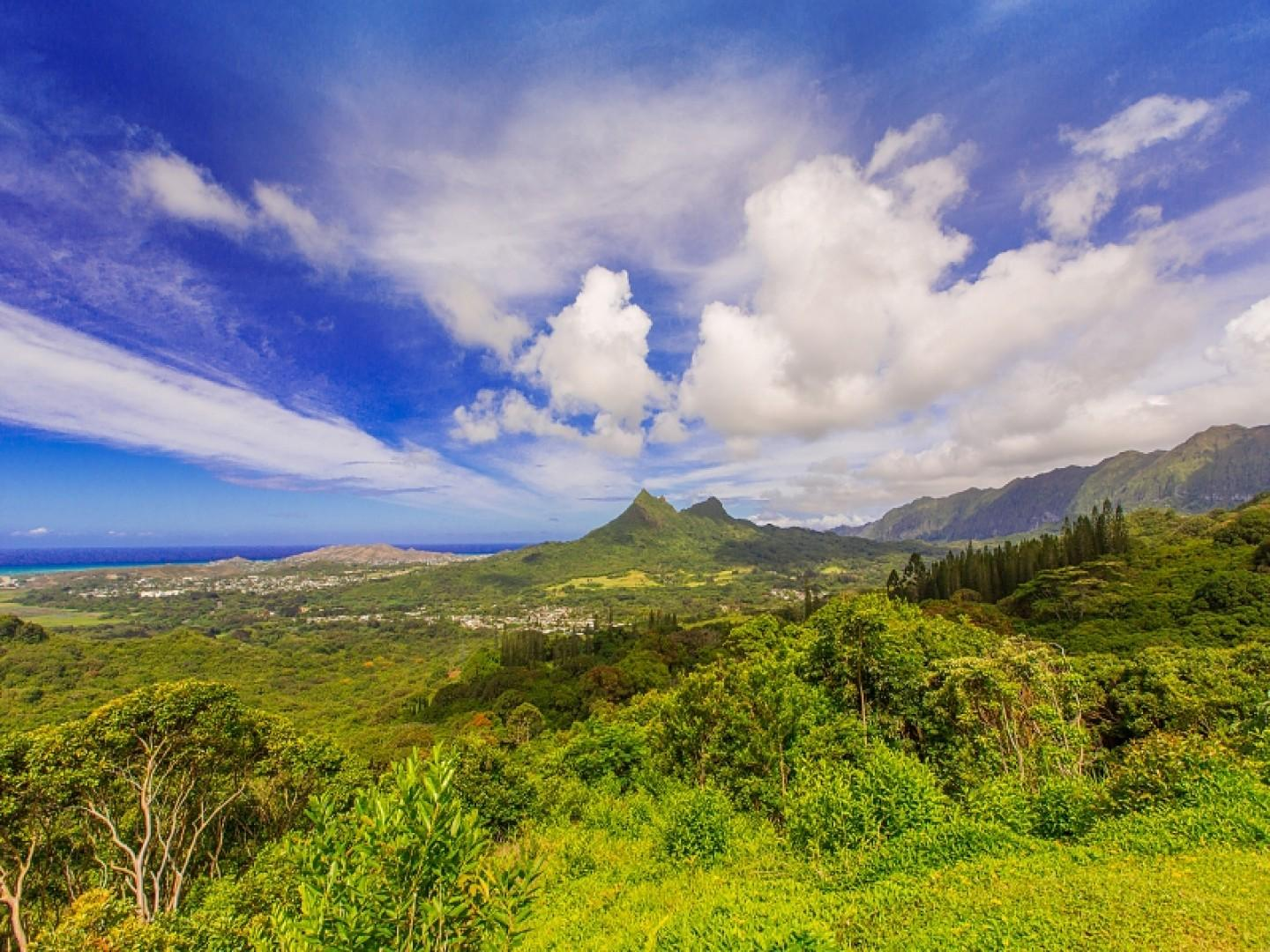 The beautiful windward side of the island!