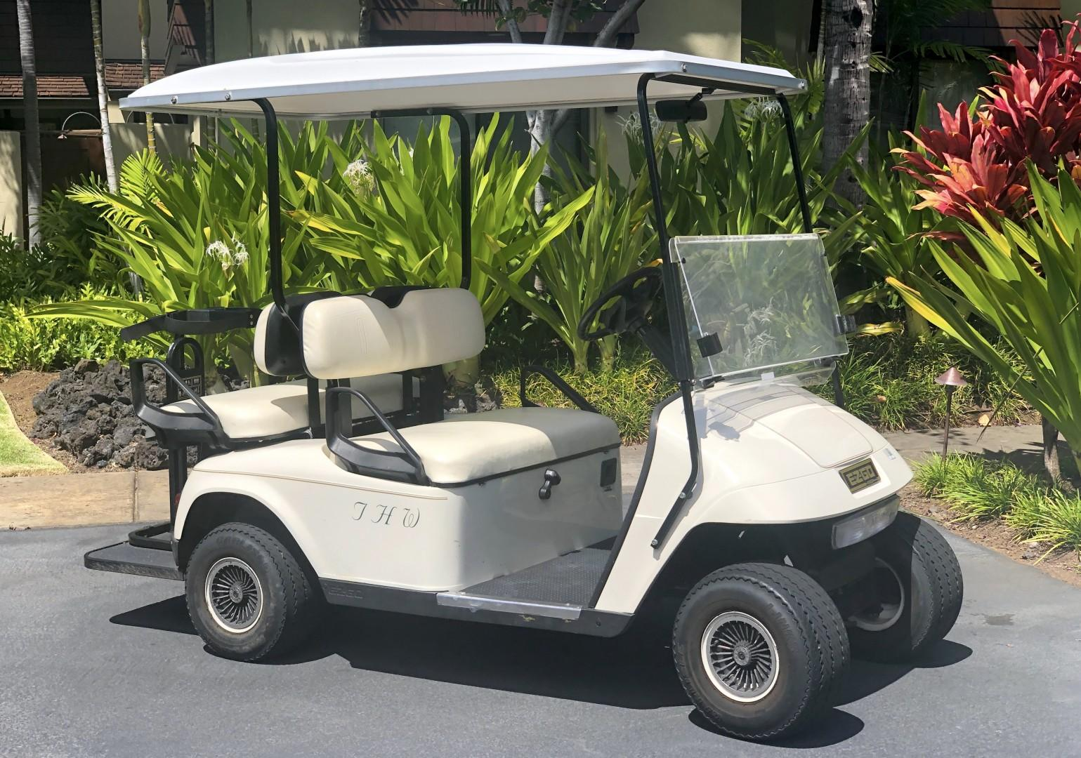 This rental comes with one golf cart!