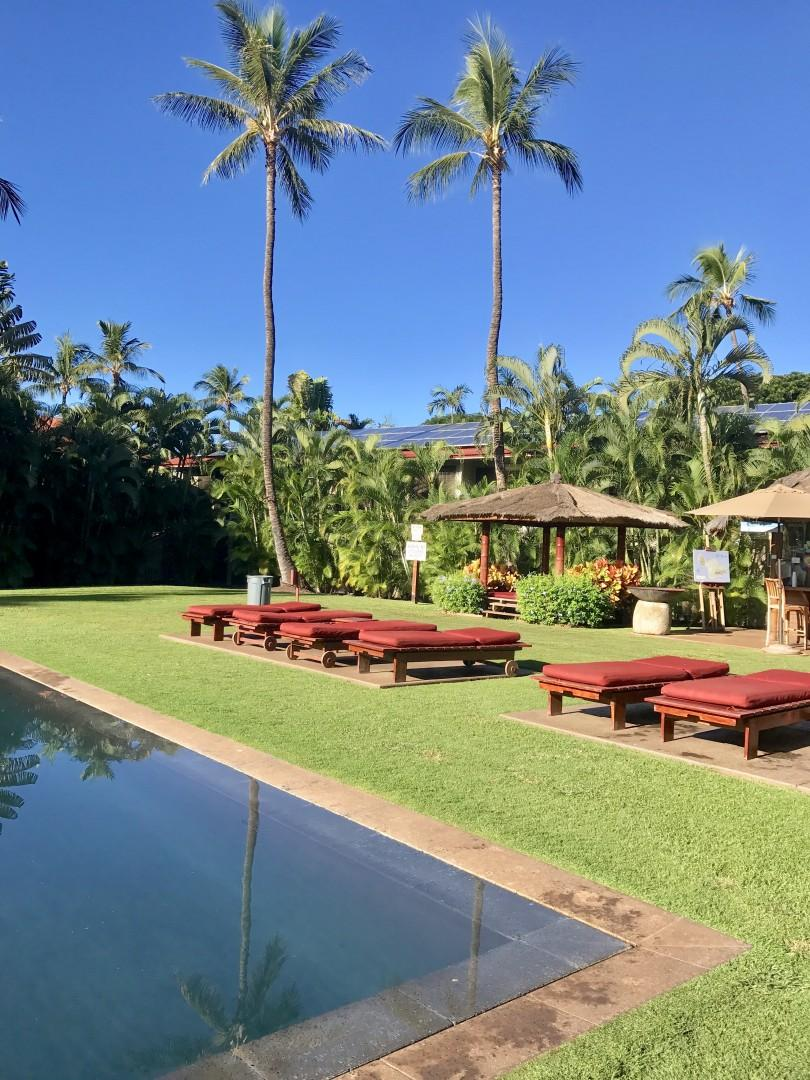 Pool, cabana, and lounges