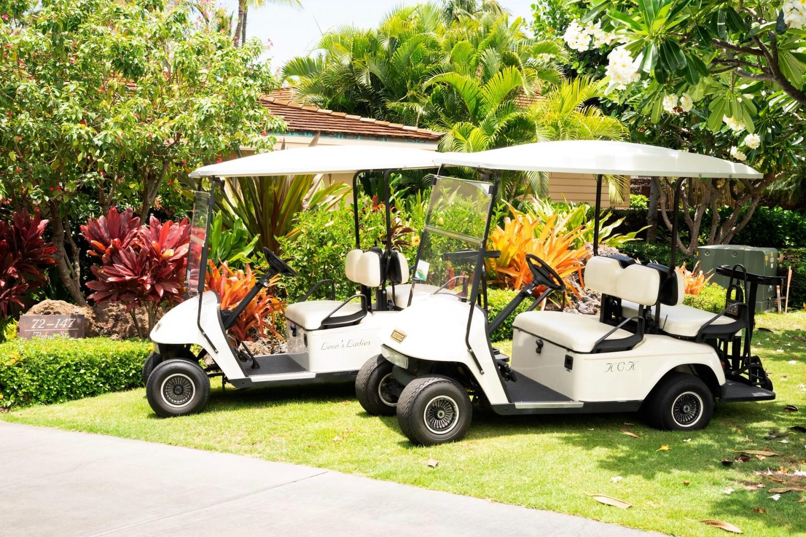 This rental comes with two 4-seater golf carts.