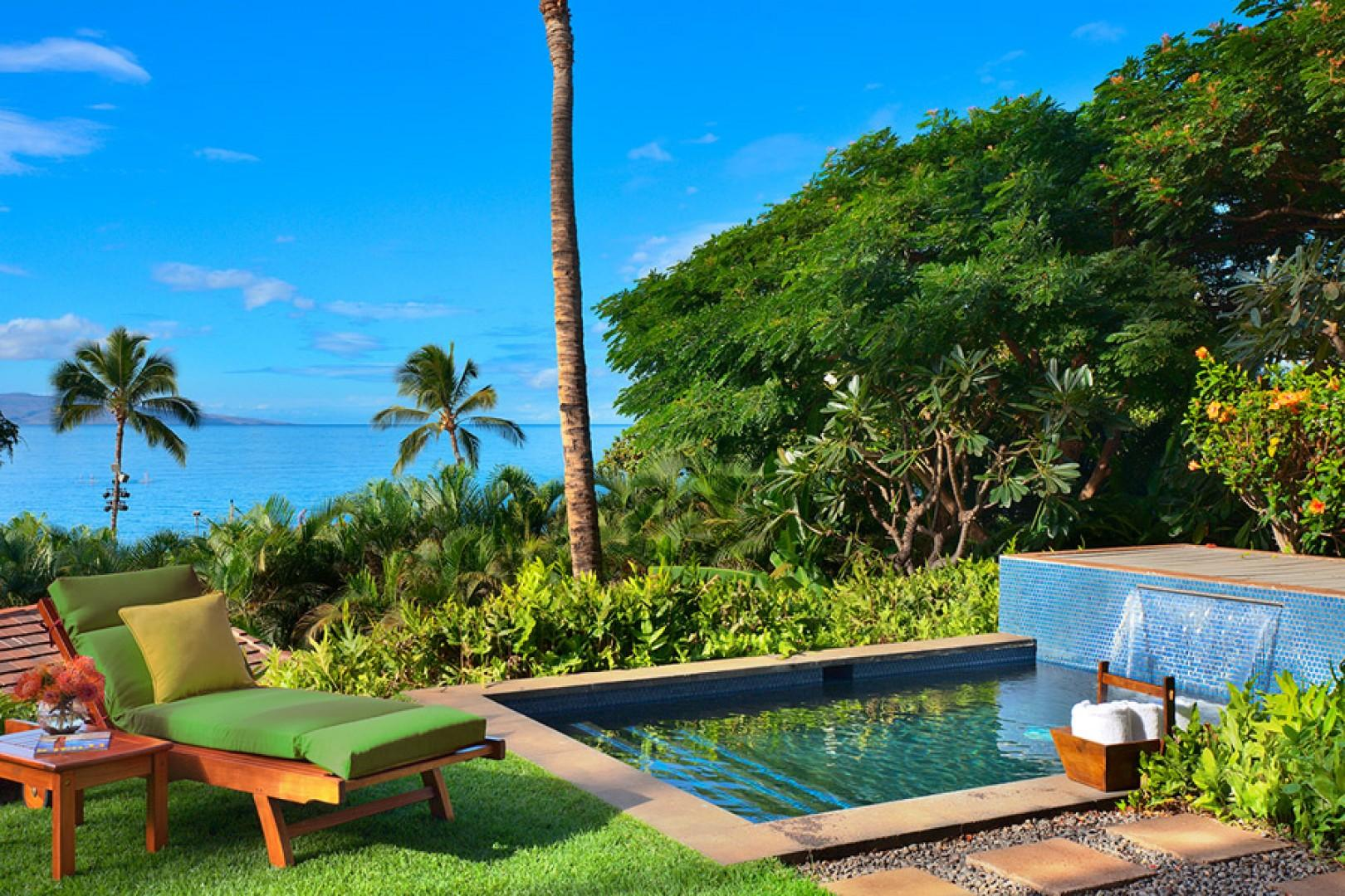 Private Plunge Pool and Ocean Views Coco Palms Pool Villa D101