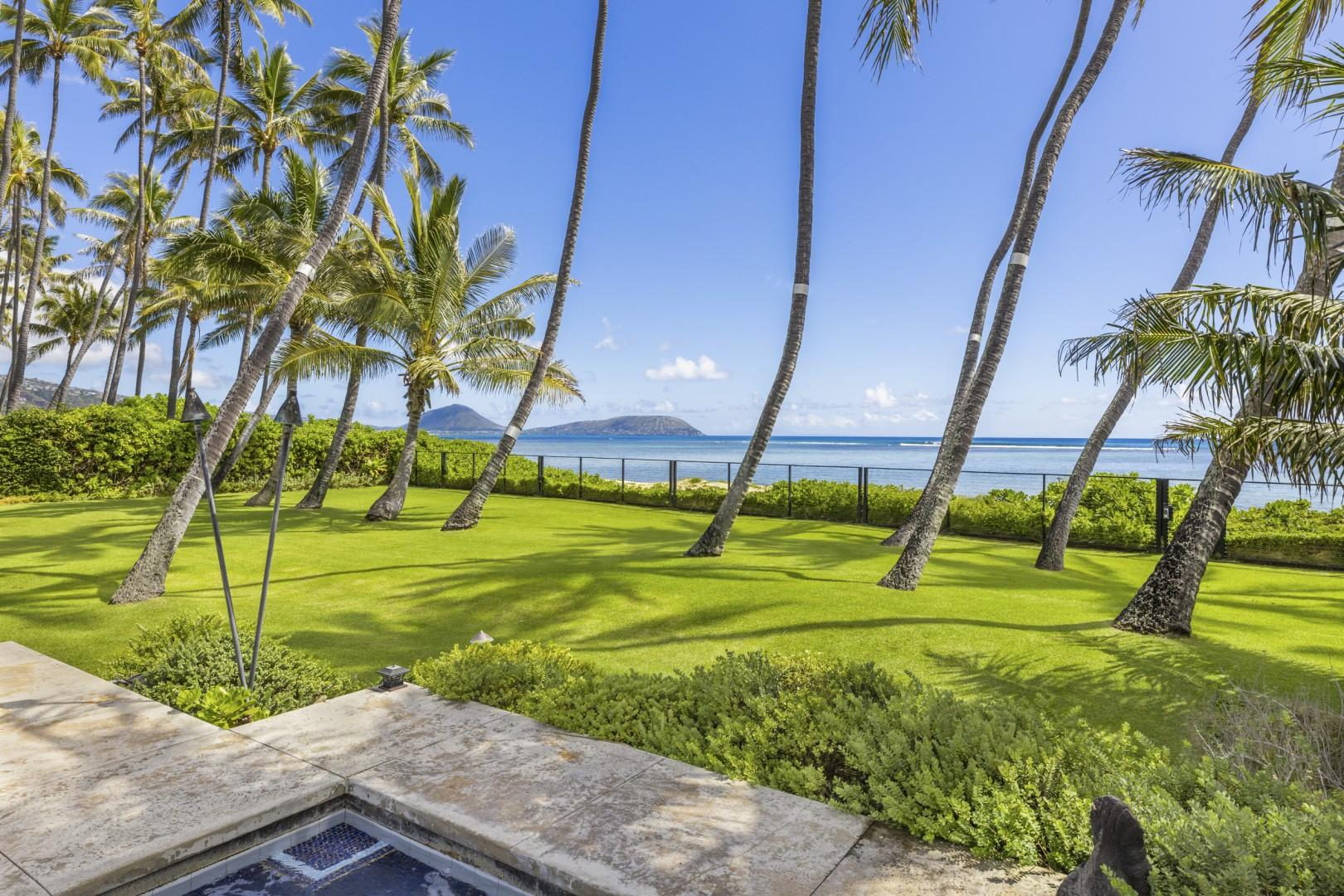 Beachfront lawn in the back yard