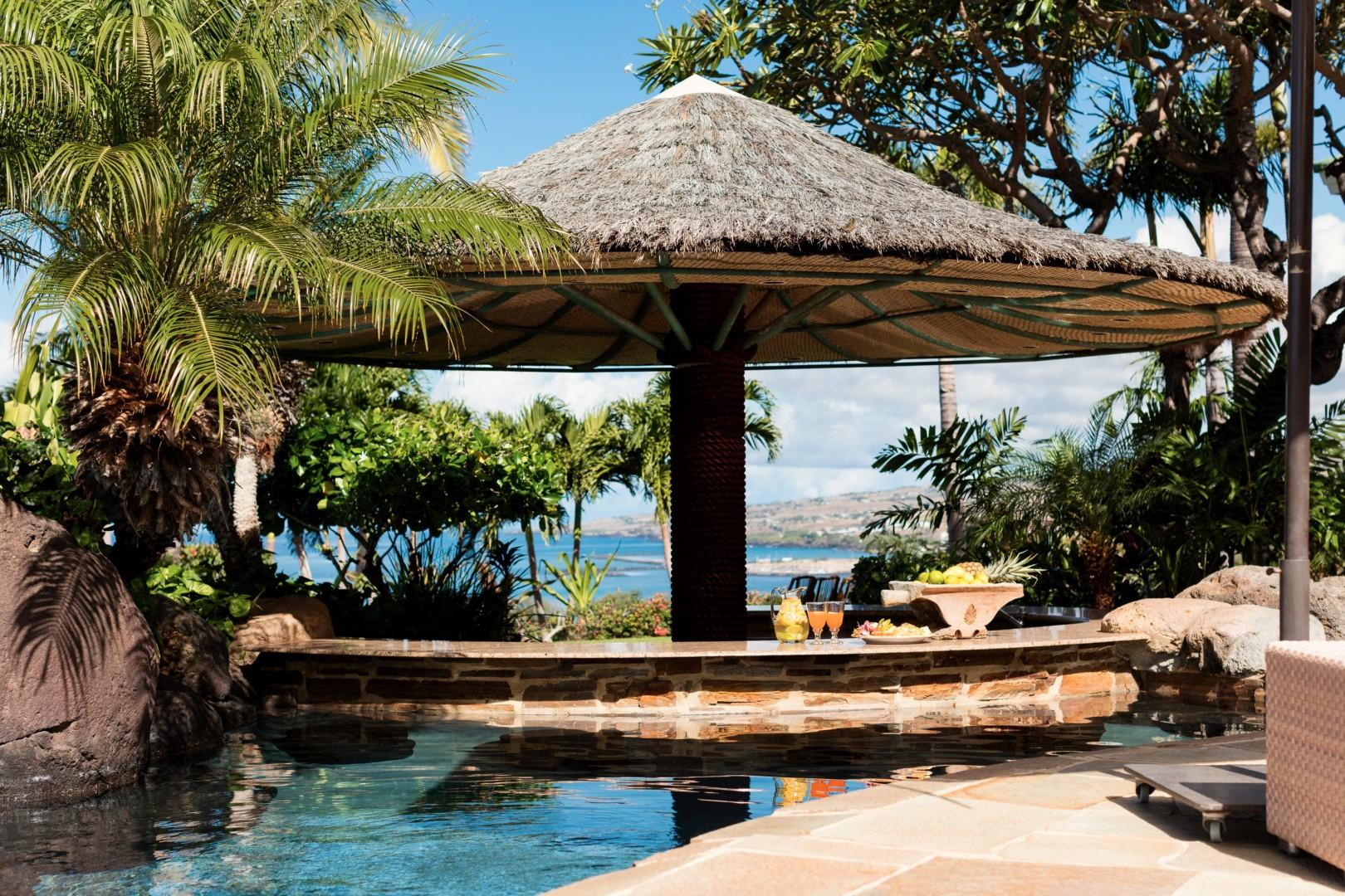 Swim-up palapa bar with submerged lava rock stools and view to ocean.