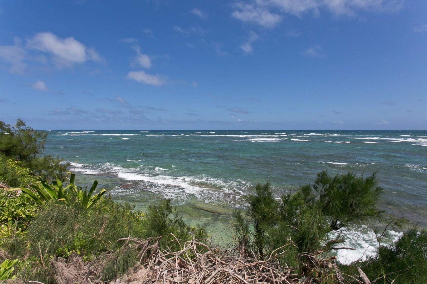 Oceanfront views.