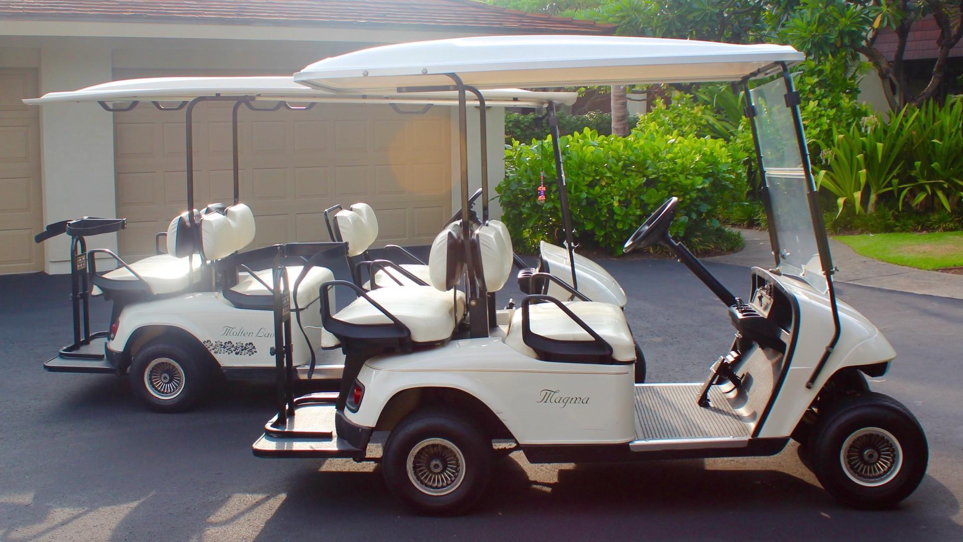 This rental comes with TWO golf carts!