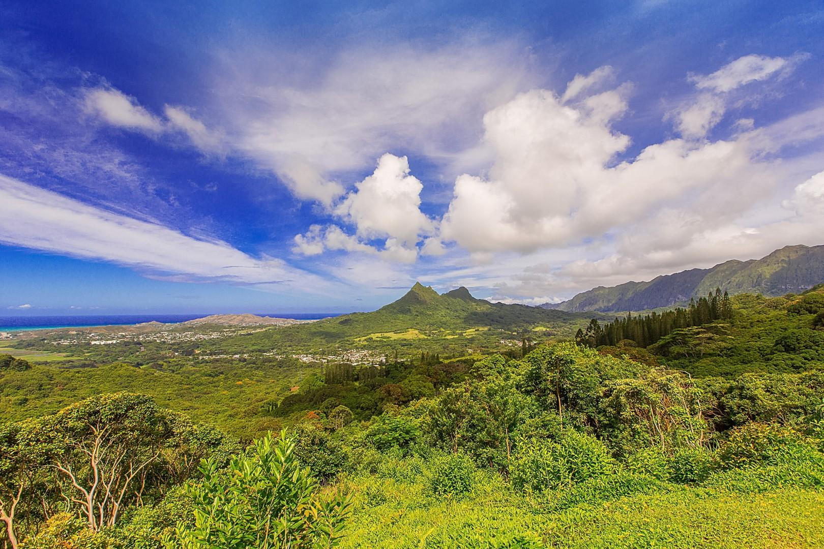 See all Oahu has to offer.