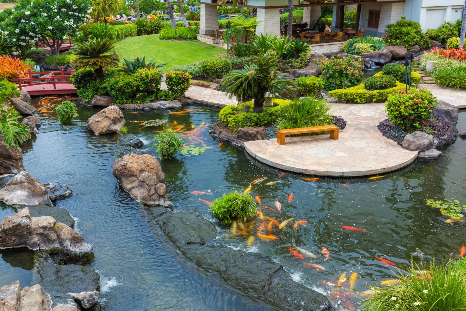 View of the Koi ponds and garden area from the Villa lanai.