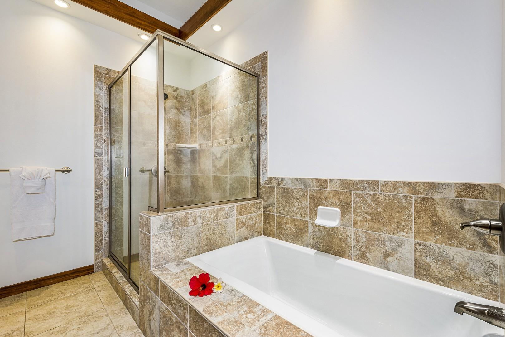 Large soaking tub and standing shower