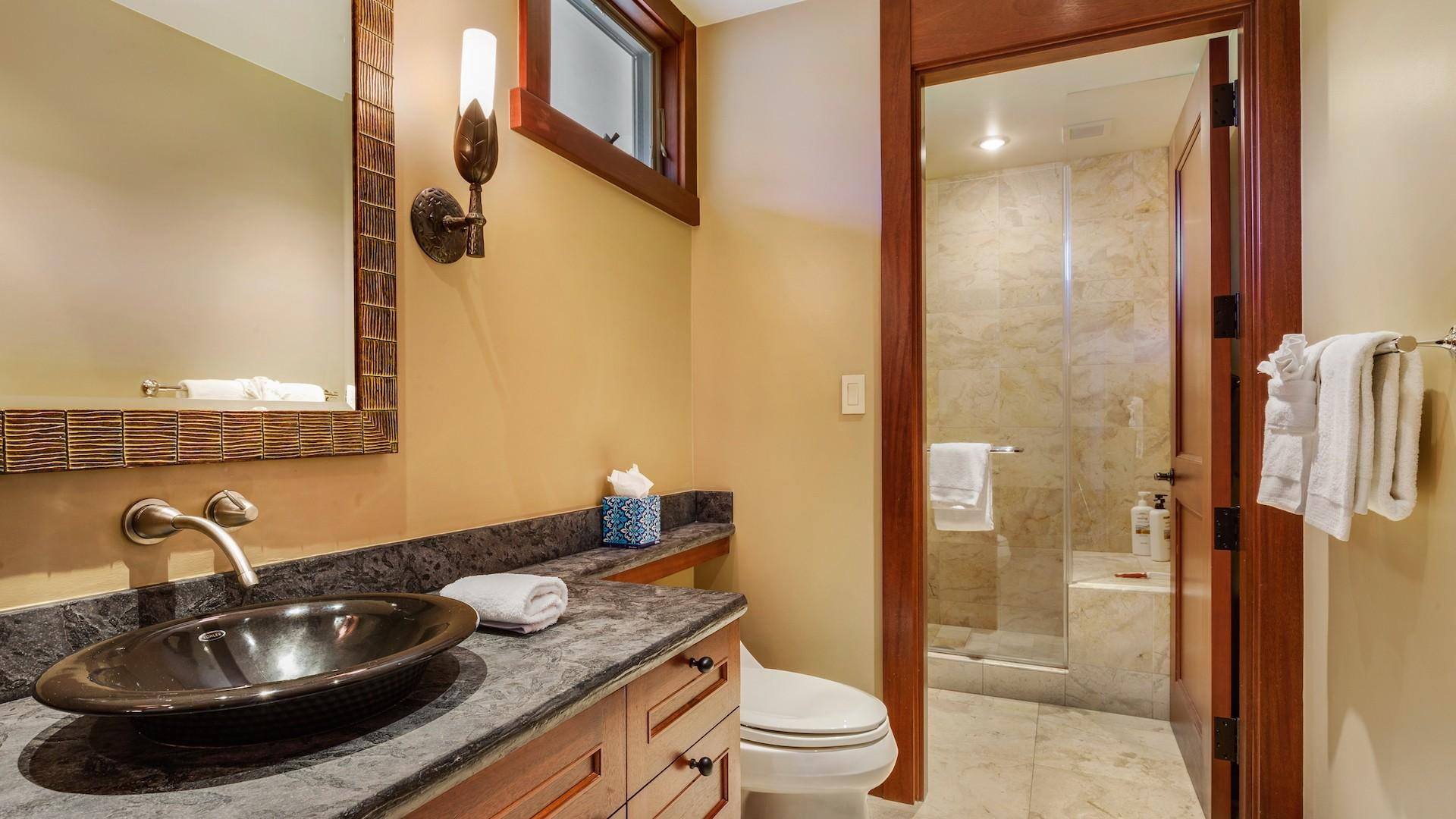 Second bathroom, with shower.