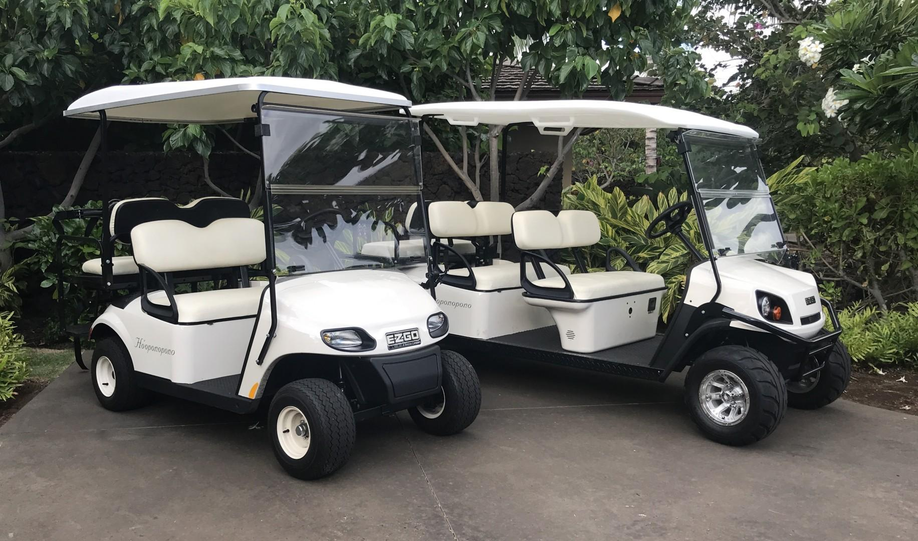 2 golf carts, one 4-seater and one 6-seater, are included in your rental for cruising the dazzling resort grounds in style!