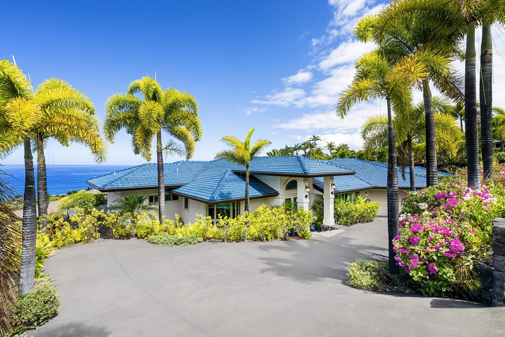Blue Hawaii from the top of the driveway