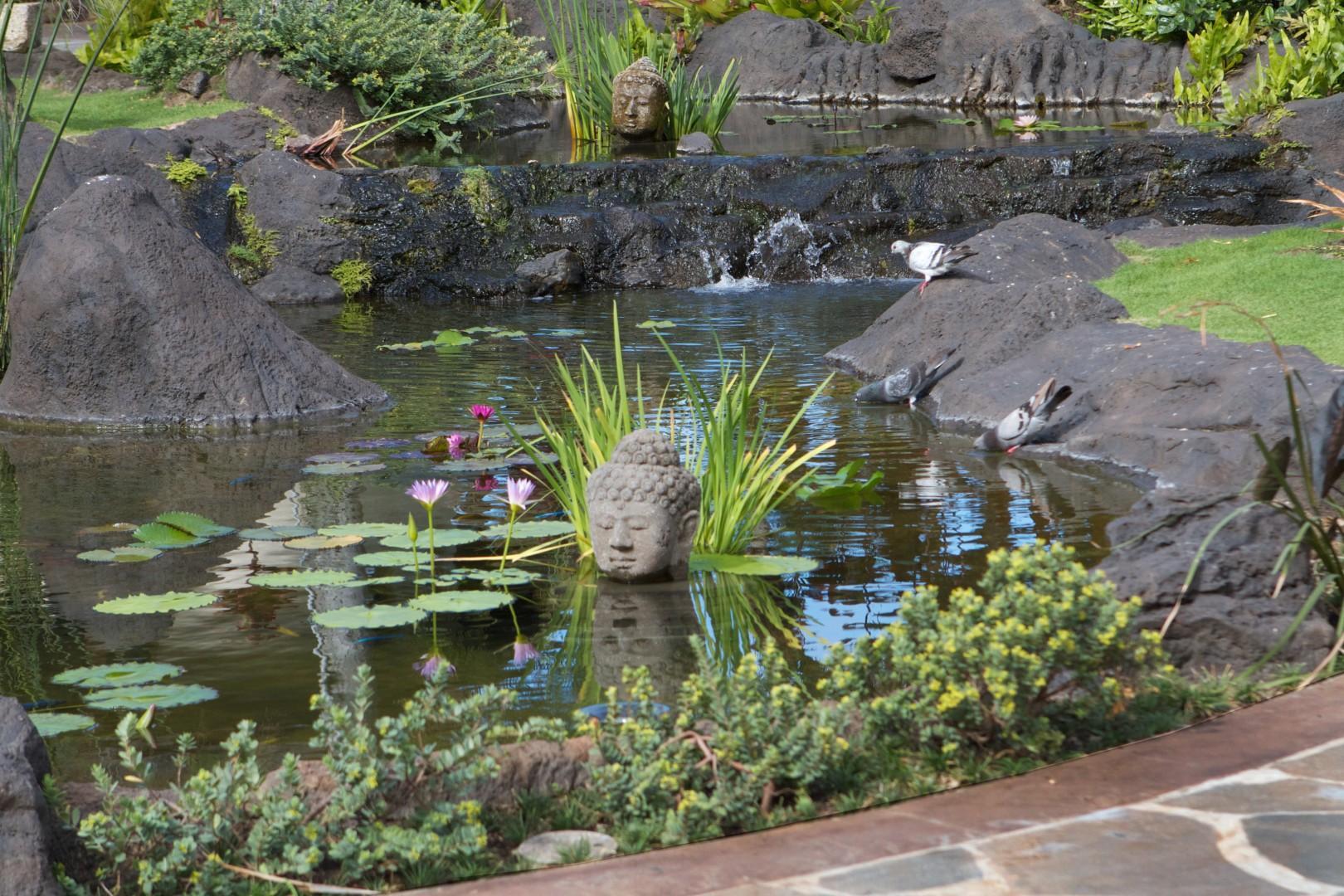 Main Pond Detail