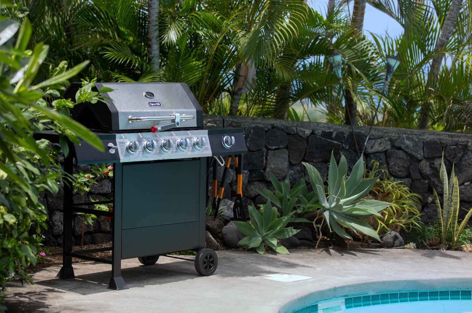 Barbecue poolside with family and friends.