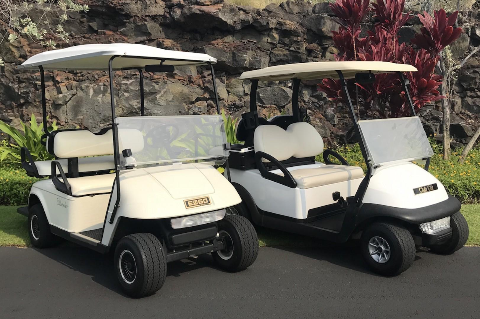 This Rental Comes with TWO 4-seater Golf Carts!