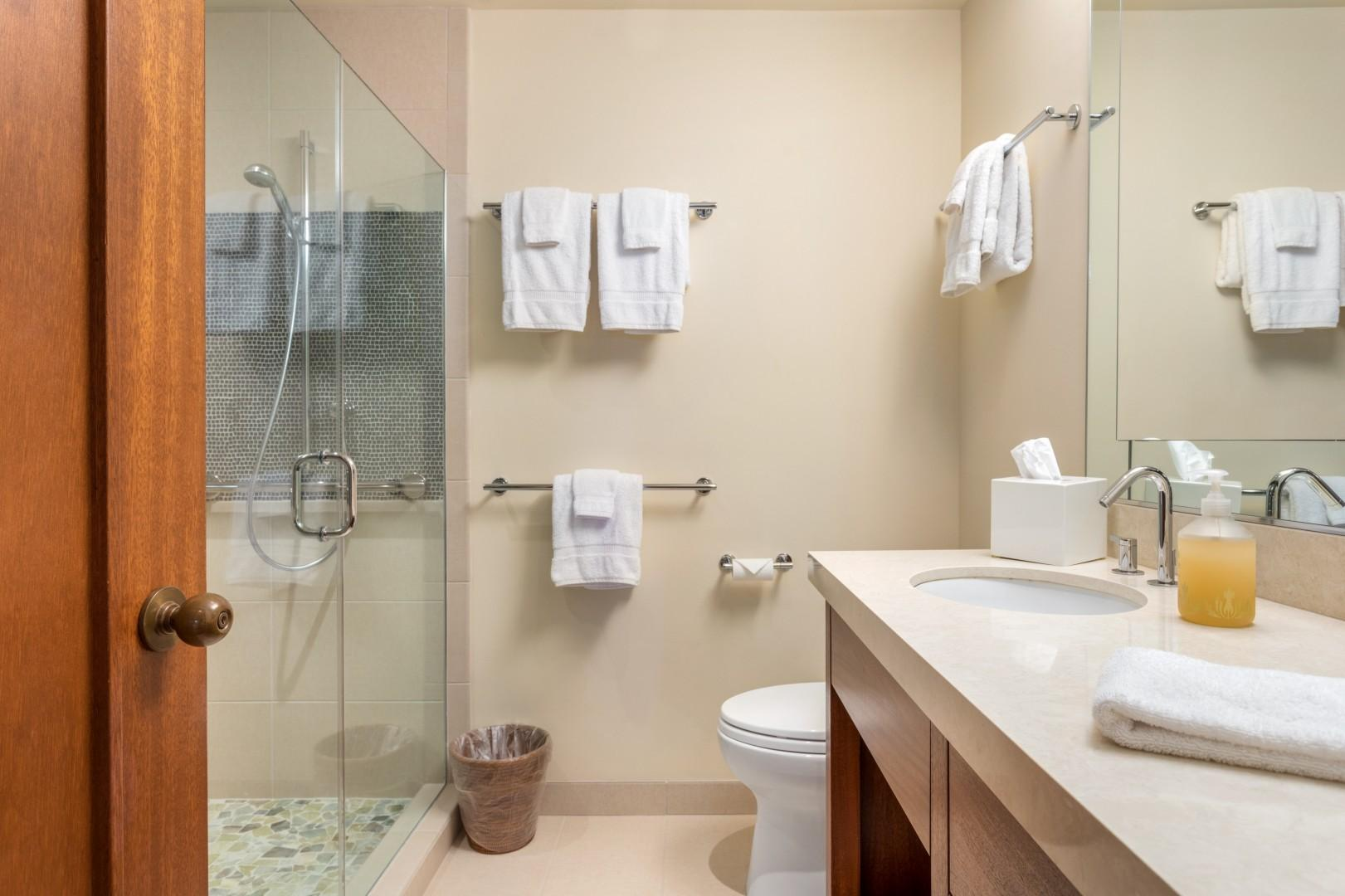 Third Bathroom, Recently Remodeled w/Walk-in Shower & Custom Soft-Close Cabinetry.