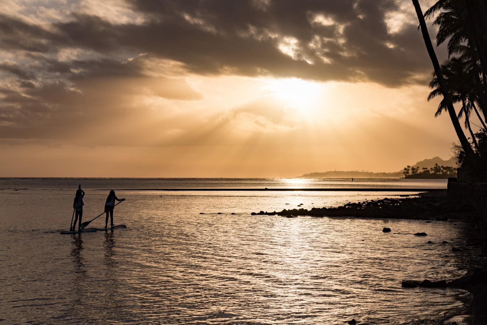 Enjoy a sunset stand up paddle session, we have four!