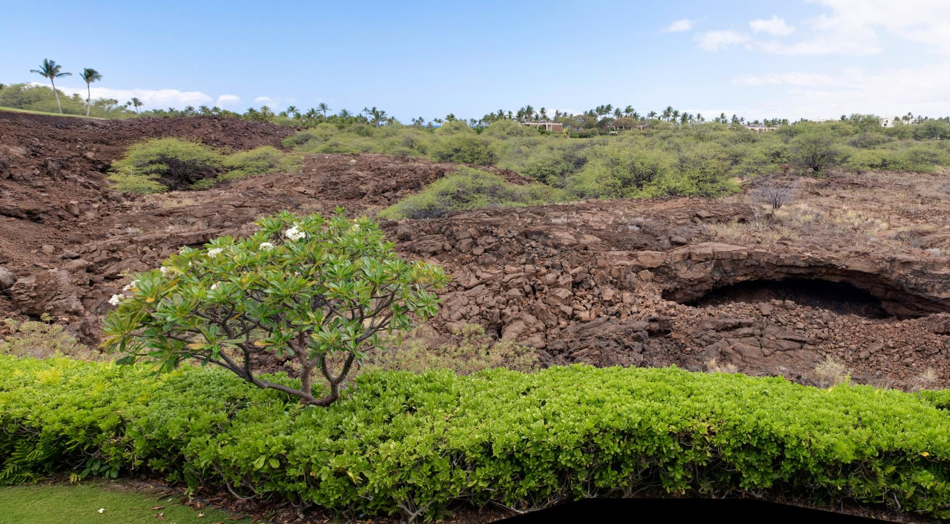 View From Lanai of Historic Preserve w/ Walking Path Meandering by Ancient Caves, Petroglyphs & Ponds, Just One Mile to Beach