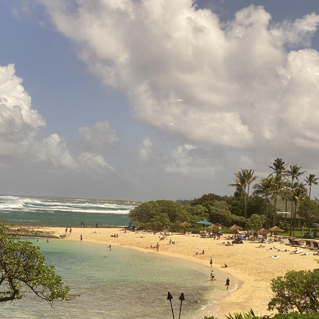 Beach at Turtle Bay