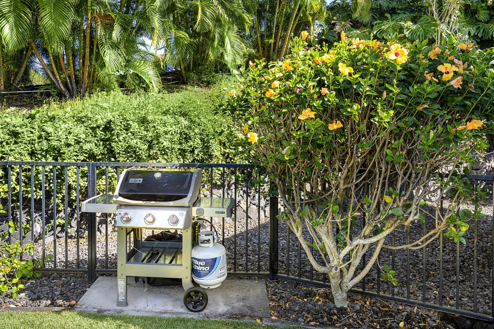 BBQ for your grilling pleasure!