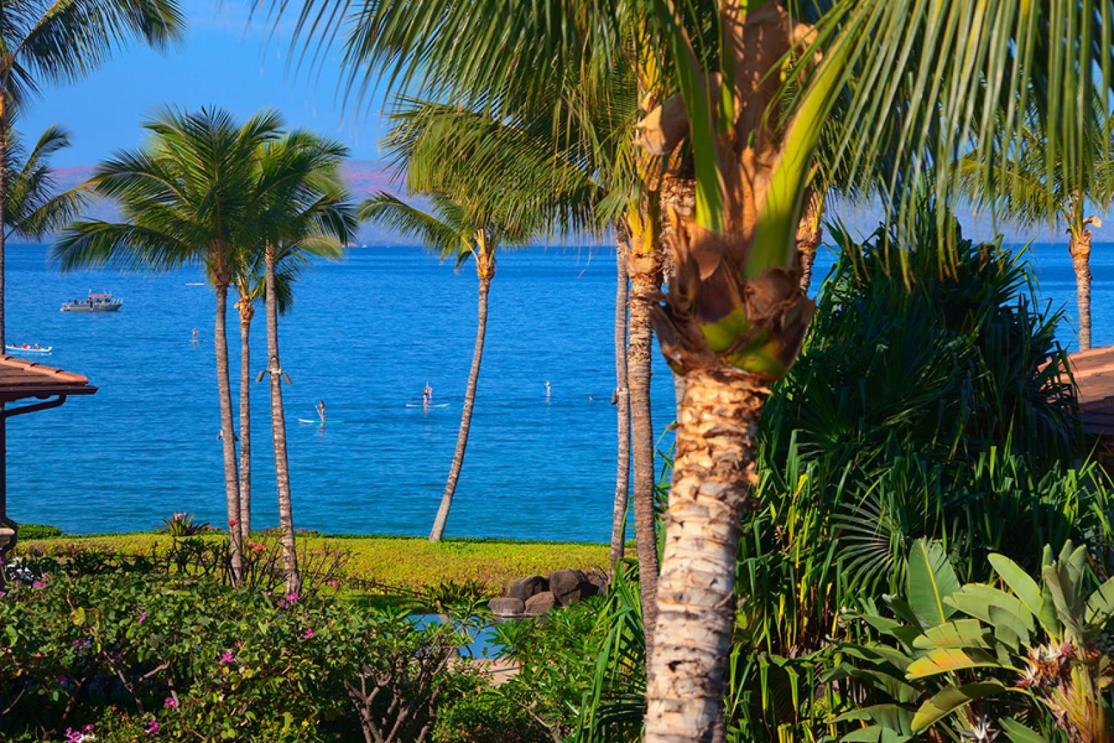A Close-Up View Towards the Pacific Ocean From Sun Splash C301. Paddleboarding, kayaking, canoeing, snorkeling and more ocean recreation are less than one block away!