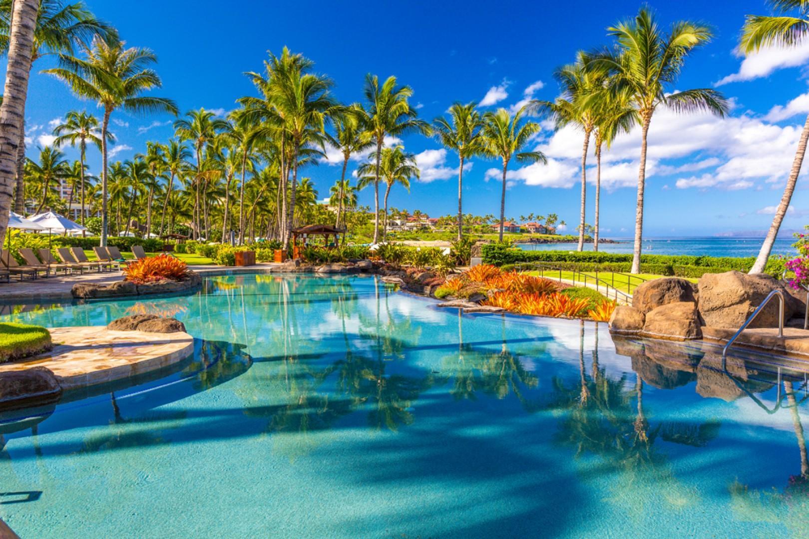 Stunning tropical views!