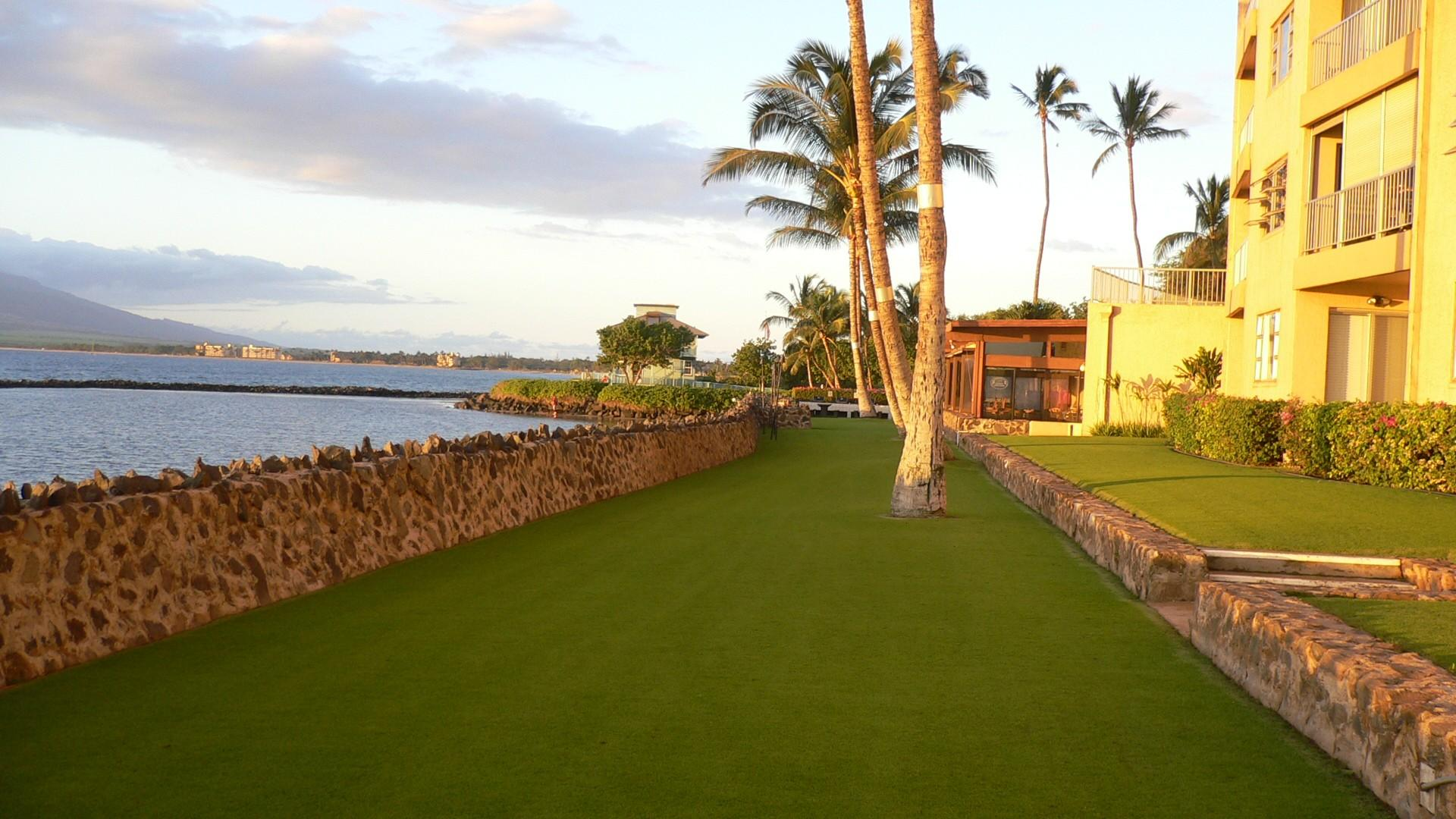 Menehune Shores' beautifully maintained oceanfront grounds.