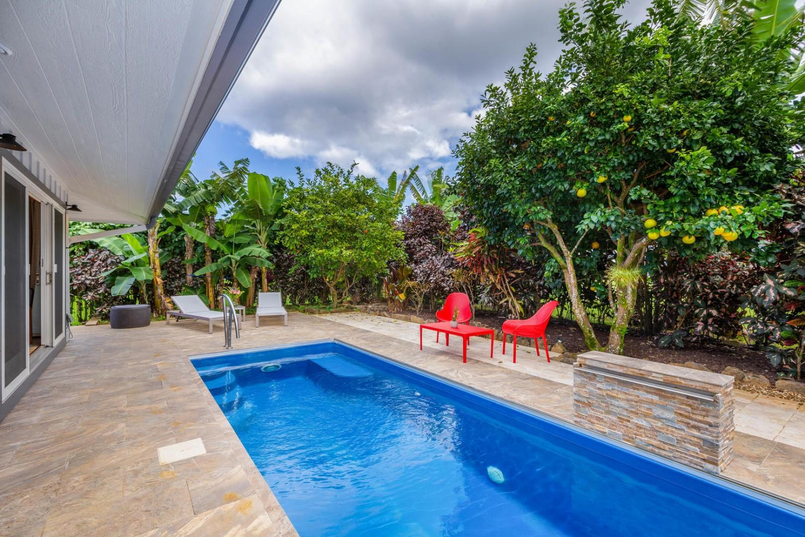 Pool surrounded by tropical landscaping
