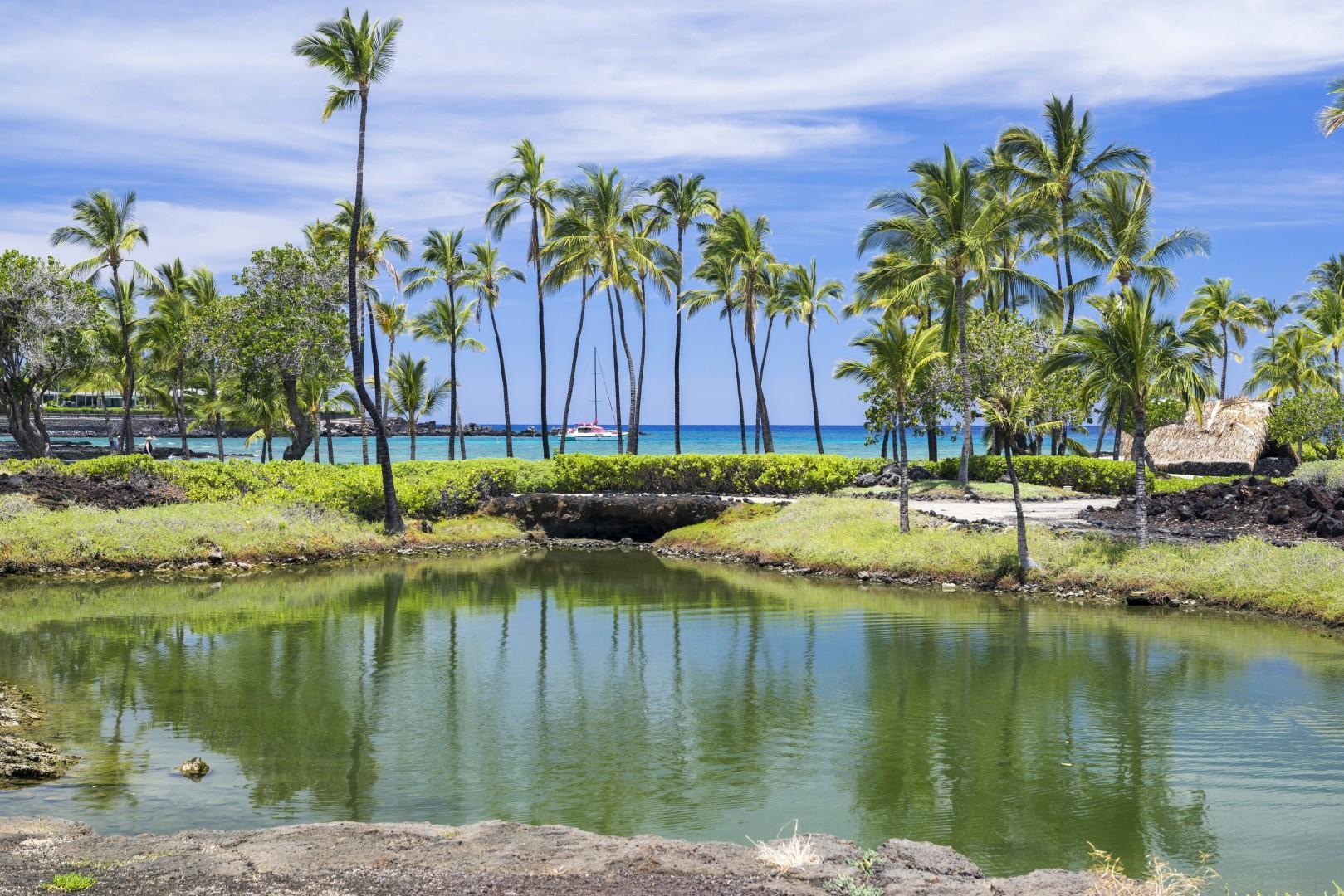 Enjoy walking around the fishponds at Mauna Lani Auberge Resort