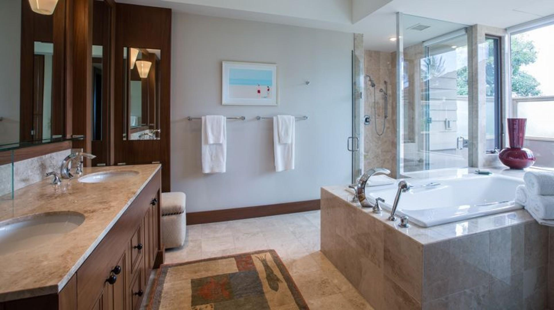 Master Bathroom with lots of light