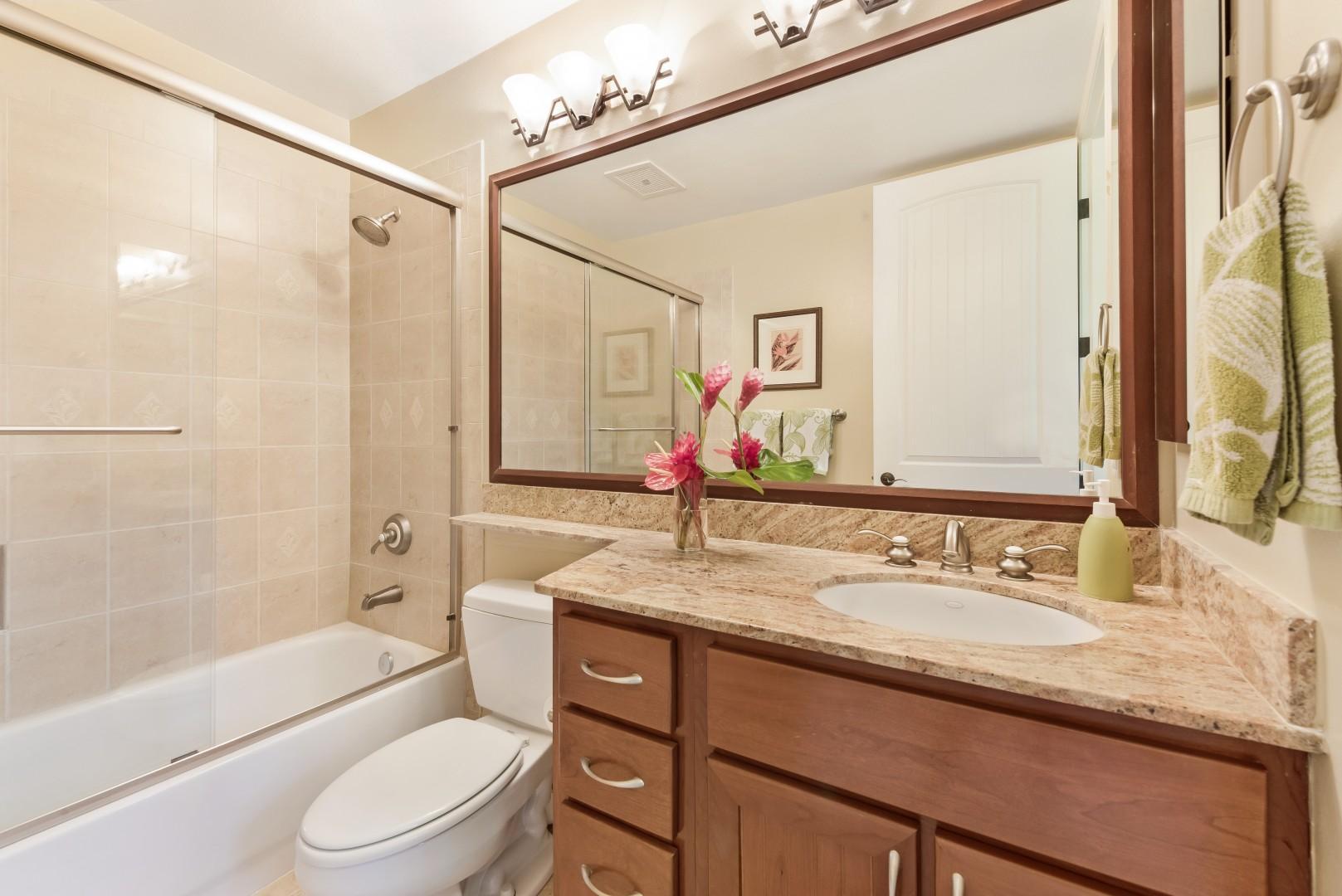 Downstairs Guest Bathroom 3