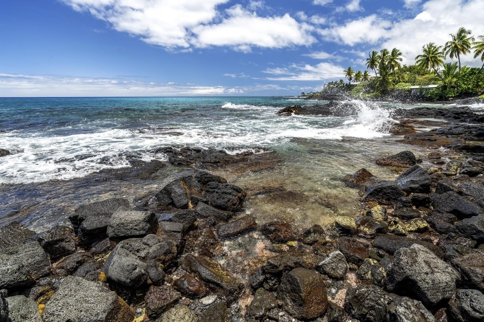 Lymans Bay shoreline access