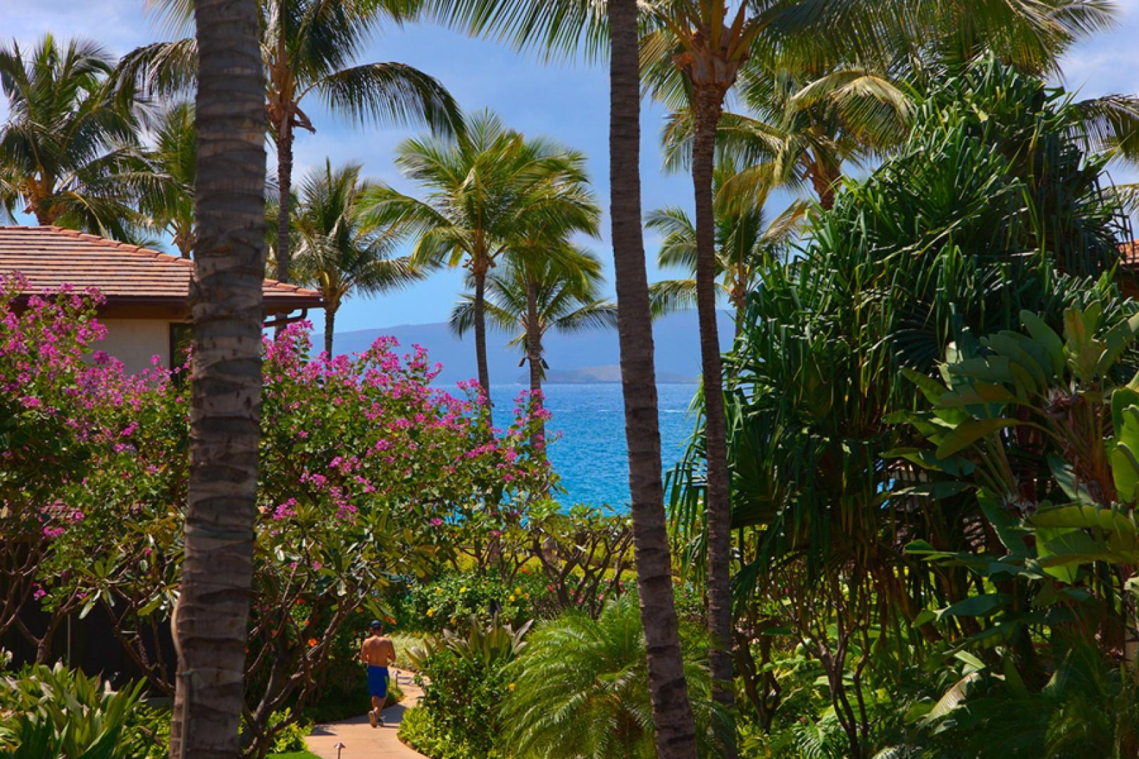 A close up zoomed-in view of the path leading to the adult pool and Wailea Beach access - partial ocean view from C201