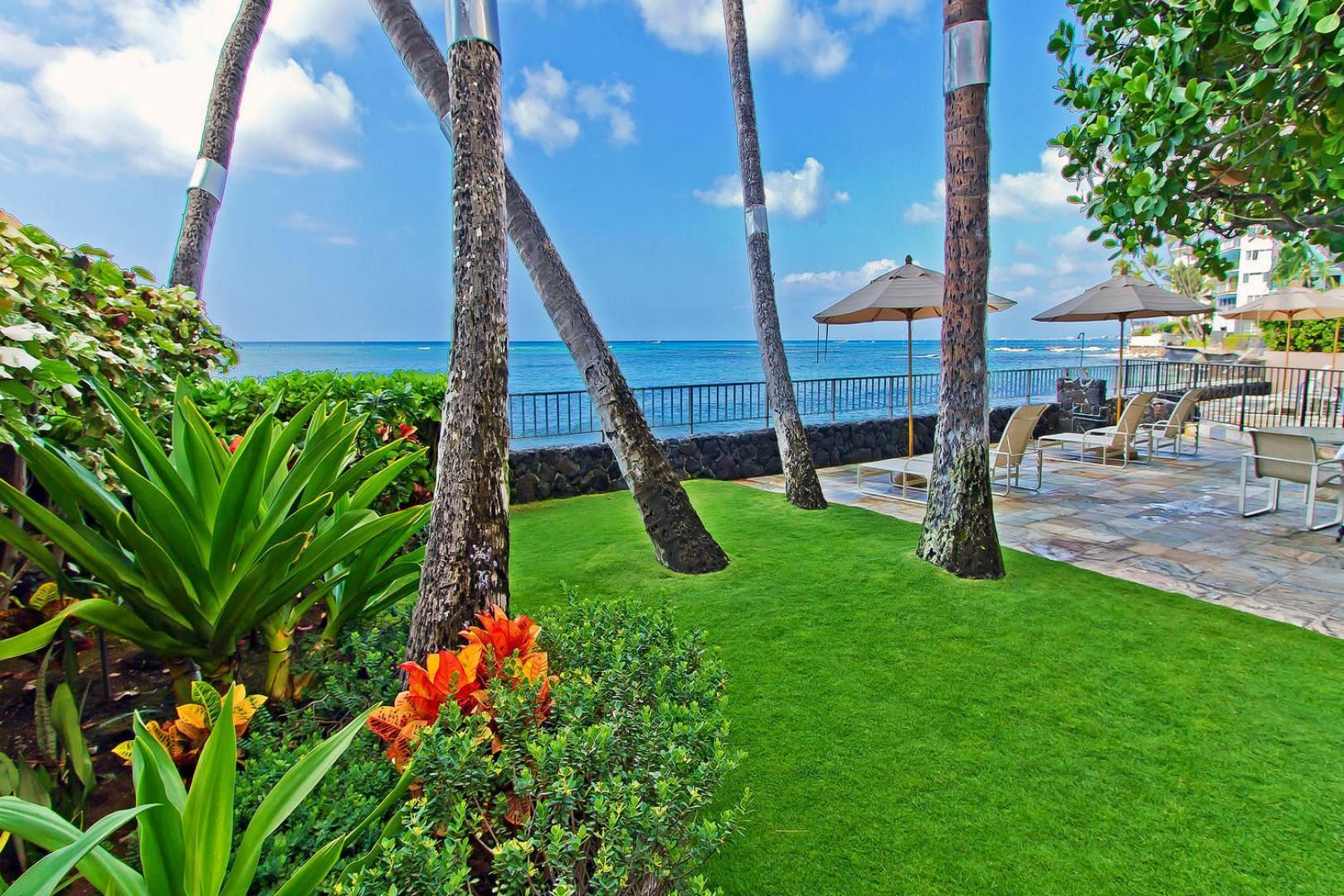 Beautiful tropical grounds.
