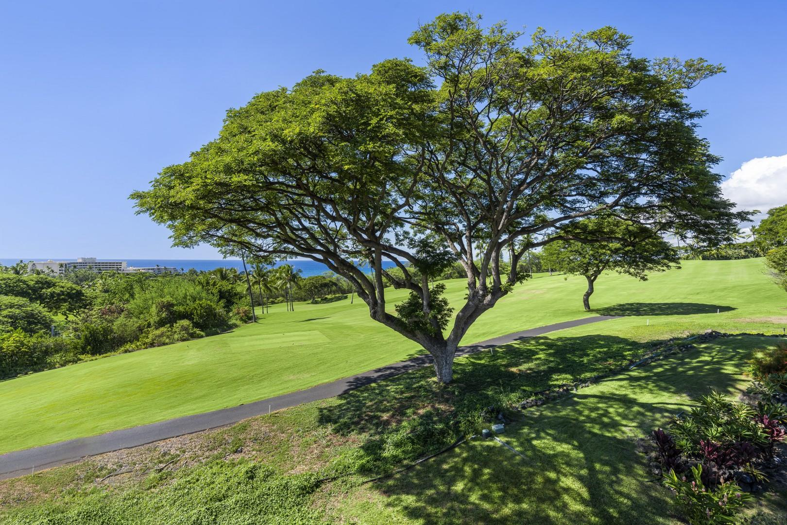 Look over the Kona Country Club golf course!