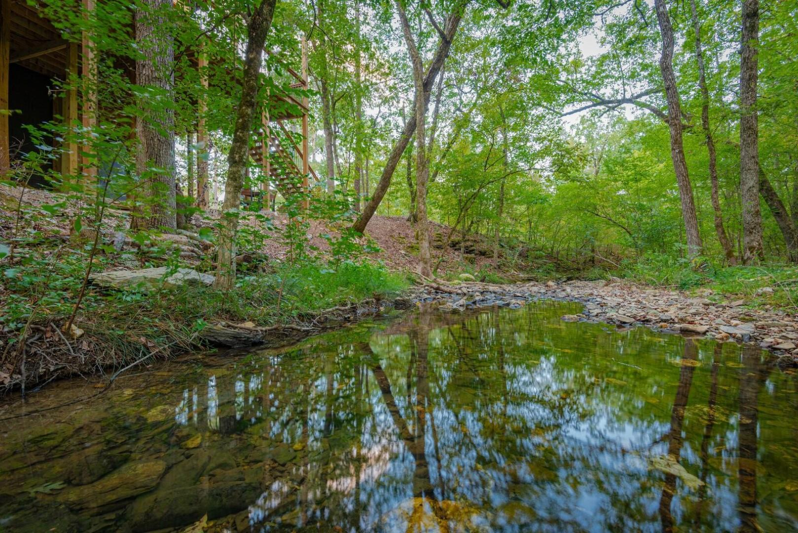 Serene on the Stream