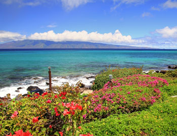 Polynesian Shores (West Maui)