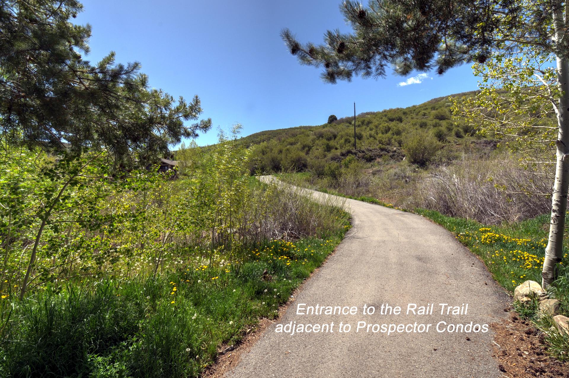Rail Trail (Hiking, Biking, Snow Shoeing)