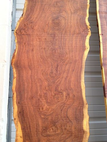 Mesquite Burl Slabs In Flitch By Jeff Harden