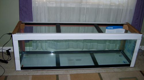Built in stand for a 125 gallon aquarium 1 tank and for How much does a 20 gallon fish tank weigh
