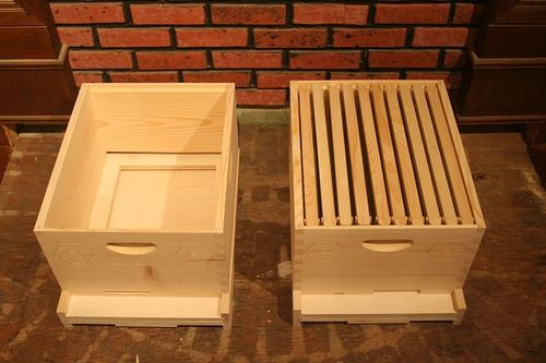 Beehives - Coe Bee Farm #1: Beehives #2 and #3 - by ...
